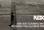 Are You Loosing My Mind by Reboot