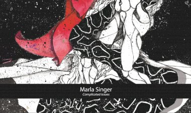 Complicated Issues by Marla Singer