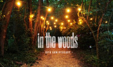 In the Woods Festival 2016