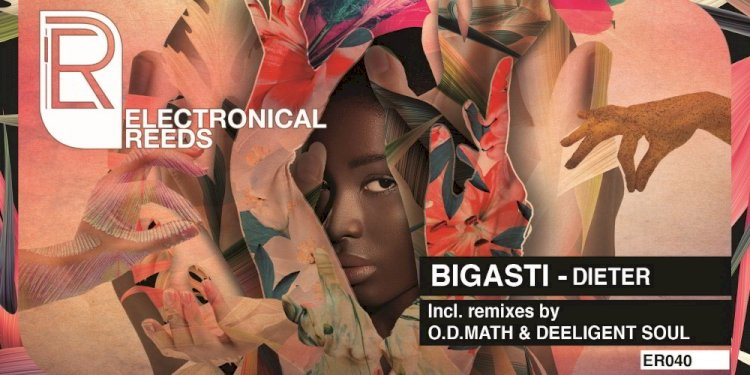 Dieter EP by Bigasti. Photo by Electronical Reeds