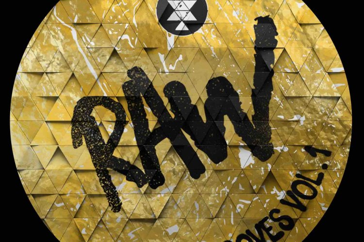 Raw Grooves Vol. 1 by Solid Grooves RAW